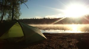 Årsjön morgon